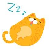 蓬松睡觉美梦猫 库存照片