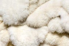 蓬松绵羊皮肤背景 免版税库存图片