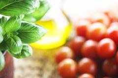蓬蒿和蕃茄 免版税库存照片
