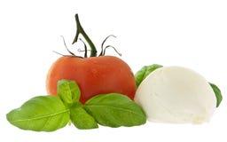 蓬蒿干酪新鲜的无盐干酪蕃茄 免版税库存图片