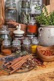 蓬蒿食物生长草本成份香料 库存照片