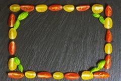 从蓬蒿,蕃茄的框架 免版税库存图片