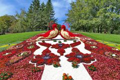 蔓藤花纹与花很大数量的白色和红色树荫的花床以两只鸟的形式在小山 库存照片