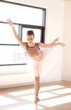 蔓藤花纹位置的芭蕾舞女演员在舞蹈演播室 库存照片