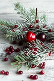 蔓越桔、樱桃和圣诞树分支 免版税库存照片