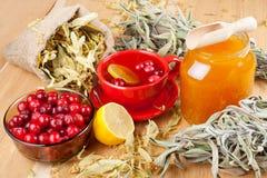 蔓越桔、瓶子用蜂蜜和果子茶杯 免版税图库摄影