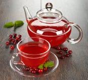 蔓越桔茶 免版税库存图片