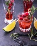 蔓越桔,迷迭香,杜松子酒嘶嘶响,在白色的鸡尾酒 免版税图库摄影