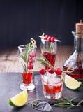 蔓越桔,迷迭香,杜松子酒嘶嘶响,在白色的鸡尾酒 库存照片