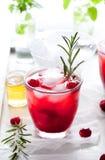 蔓越桔,迷迭香,杜松子酒嘶嘶响,鸡尾酒 免版税库存图片