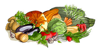 蔬菜五颜六色的静物画 向量例证