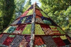 蔬菜和水果-秋天收获 库存照片