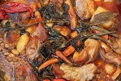 蔬菜和肉 免版税库存照片