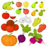 蔬菜和水果,集合 库存例证