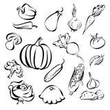 蔬菜图标集合草图 库存例证