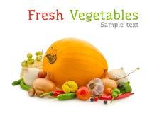 蔬菜构成 库存照片
