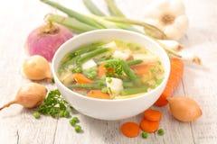 蔬菜汤和成份 免版税库存照片