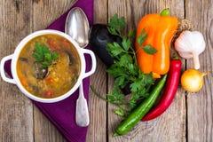 蔬菜汤用扁豆 库存照片
