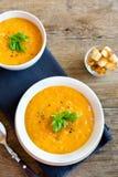 蔬菜汤用油煎方型小面包片 库存图片