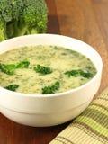 蔬菜汤用硬花甘蓝,特写镜头 免版税库存照片