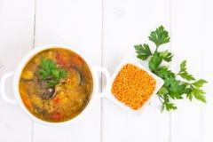 蔬菜汤用红色小扁豆 免版税库存照片