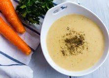 蔬菜汤用芹菜,红萝卜、葱和调味酱调味 免版税库存图片