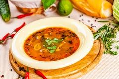 蔬菜汤用草本和香料在白色板材 免版税库存图片