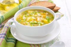 蔬菜汤 库存图片