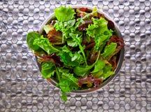 蔬菜沙拉地中海绿色和红色lettucce菠菜 免版税库存照片