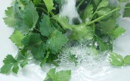 蔬菜沙拉水 库存图片