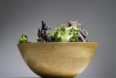 蔬菜沙拉的新有机混合在一个木碗的 健康的概念 库存照片