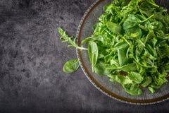 蔬菜沙拉芝麻菜和婴孩菠菜与石灰 库存图片