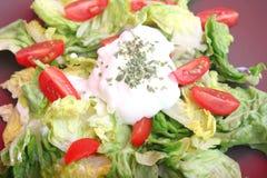 蔬菜沙拉蕃茄 库存图片