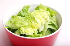 蔬菜沙拉 免版税图库摄影