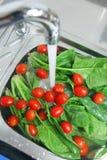 蔬菜洗涤 库存图片