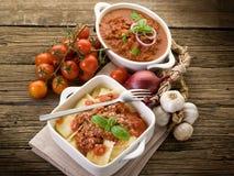 蔬菜炖肉馄饨调味汁 免版税库存图片