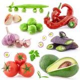 蔬菜的收集 免版税库存照片