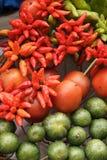 蔬菜的收集 库存照片