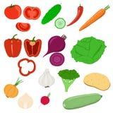 蔬菜的收集 免版税库存图片