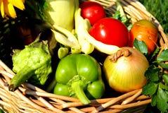 蔬菜背景 免版税图库摄影