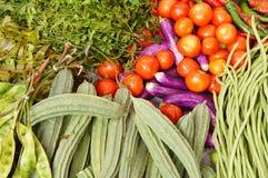蔬菜背景 免版税库存照片
