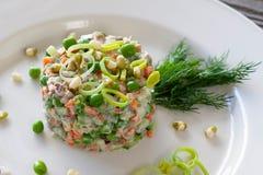 蔬菜菜肴:由黄瓜做的俄国沙拉,红萝卜,avo 免版税图库摄影
