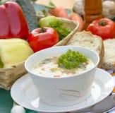 蔬菜通心粉汤汤蔬菜 库存图片