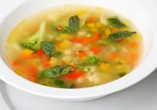 蔬菜通心粉汤汤蔬菜 免版税库存图片