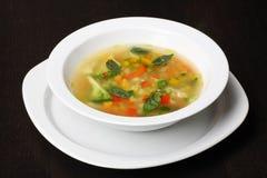 蔬菜通心粉汤汤蔬菜 图库摄影