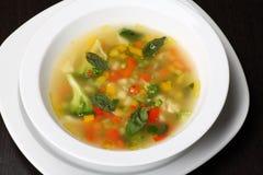 蔬菜通心粉汤汤蔬菜 免版税图库摄影