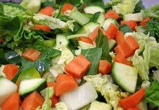 蔬菜通心粉汤汤 图库摄影