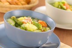 蔬菜通心粉汤汤 库存图片