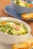 蔬菜通心粉汤汤 免版税图库摄影