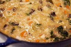 蔬菜通心粉汤,豆汤 免版税库存图片